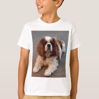 Adorable Cavalier King Charles Spaniel T-Shirt