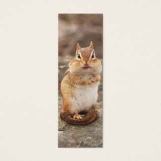 Adorable Chipmunk Mini Business Card