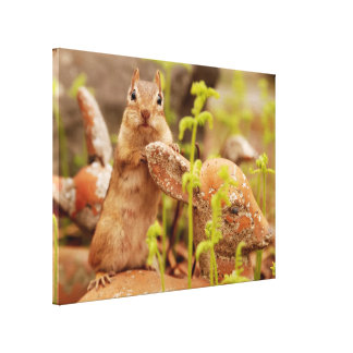 Adorable Chipmunk on Statue Wrapped Canvas