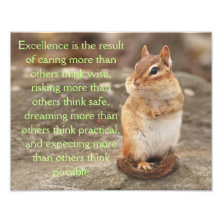 Adorable Chipmunk with Excellence Quote Photograph