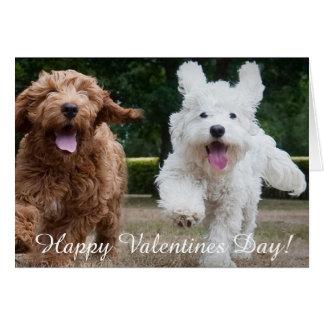 Adorable Cockapoo Puppies | Valentines Day Card