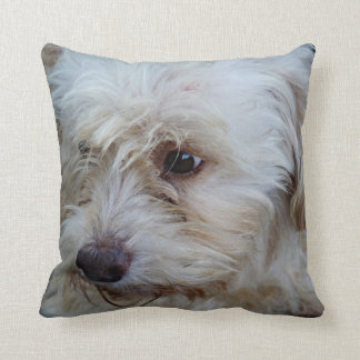 Adorable Cockapoo Puppy Mojo throw pillow