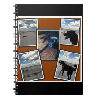 adorable collage of photos of beach and dog notebook