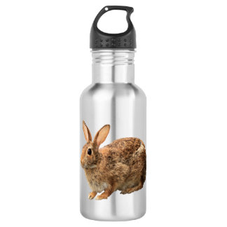 Adorable Cute Cuddly Cottontail Wild Bunny Rabbit 532 Ml Water Bottle