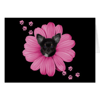Adorable Cute Sly Heaven Chihuahua Card