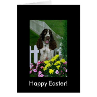 Adorable Cute Springer Spaniel Easter Card