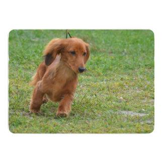 Adorable Dachshund Puppy 13 Cm X 18 Cm Invitation Card