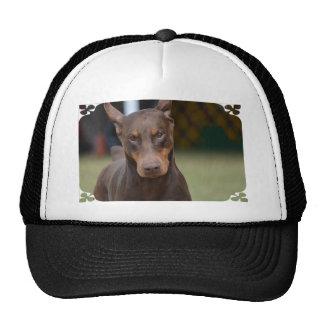 Adorable Doberman Pinscher Hat