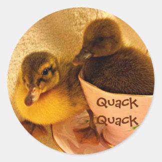 Adorable Ducks Say Quack Round Sticker