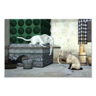 Adorable Elephant Cats Art Photo