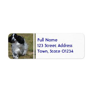 Adorable English Cocker Spaniel Return Address Label