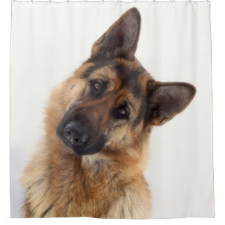 Adorable funny german shepherd portrait shower curtain