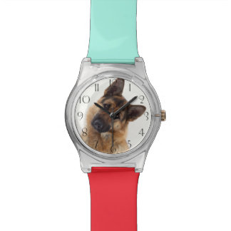 Adorable funny german shepherd portrait watch