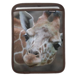 Adorable Giraffe iPad Sleeve