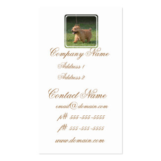 Adorable Glen of Imaal Terrier Business Card Template