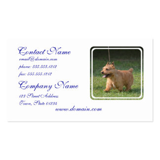 Adorable Glen of Imaal Terrier Double-Sided Standard Business Cards (Pack Of 100)