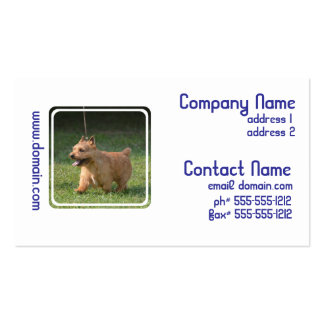 Adorable Glen of Imaal Terrier Business Card Templates