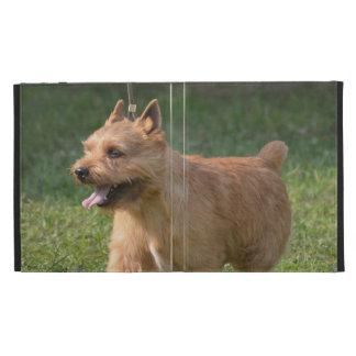 Adorable Glen of Imaal Terrier iPad Cases