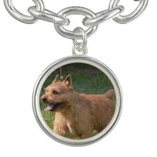 Adorable Glen of Imaal Terrier Charm Bracelet