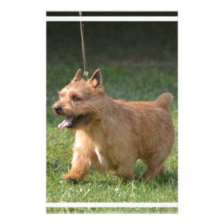 Adorable Glen of Imaal Terrier Stationery Design
