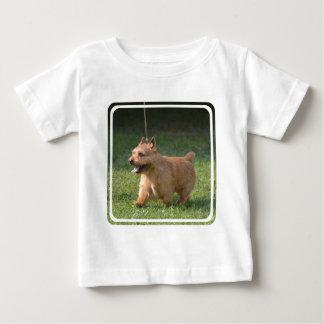 Adorable Glen of Imaal Terrier Tees