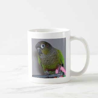 Adorable Greencheek Conure Coffee Mug