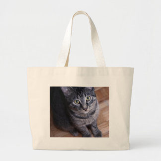 Adorable Grey Cat Jumbo Tote Bag