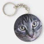 Adorable Grey Cat Key Chain