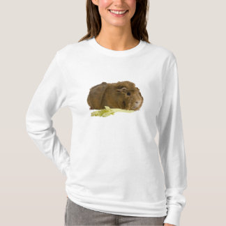 Adorable Guinea Pig Eating Celery Photography T-Shirt