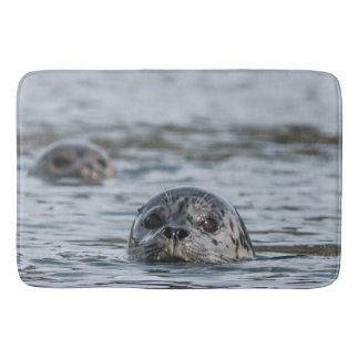 Adorable Harbor Seal Bath Mat