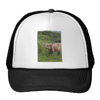 Adorable Highland Cow Mesh Hat