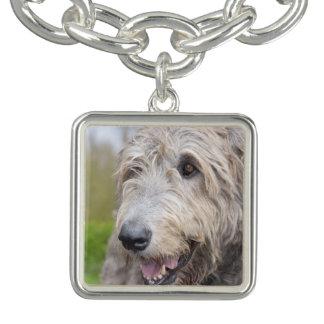 Adorable Irish Wolfhound