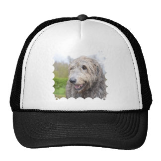 Adorable Irish Wolfhound Mesh Hat