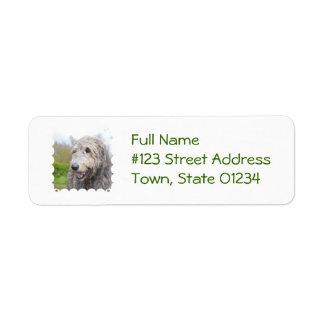 Adorable Irish Wolfhound Return Address Label