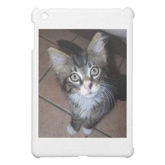 Adorable kitten iPad mini cover
