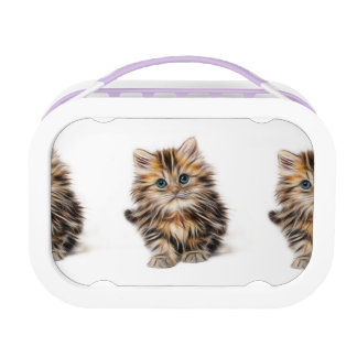 Adorable Kitten Painting Lunch Box