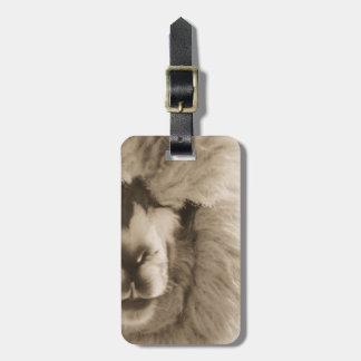 Adorable Llama/Alpaca Luggage Tag