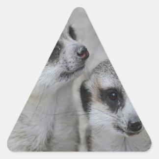 adorable meerkats s triangle sticker