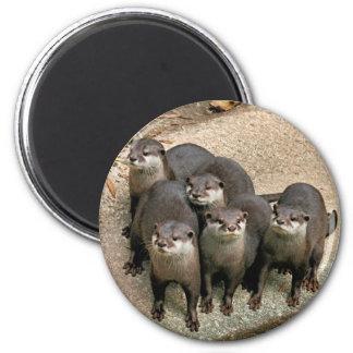 Adorable Otter Family 6 Cm Round Magnet