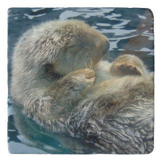 Adorable Otter Trivet