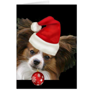Adorable Papillon  dog in a Santa hat Card