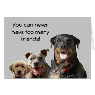 Adorable Pets Friendship Card