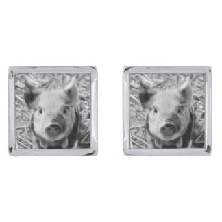 adorable piglet silver finish cuff links