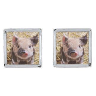 adorable piglet silver finish cufflinks