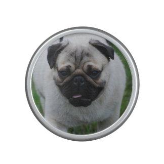 Adorable Pug Bluetooth Speaker