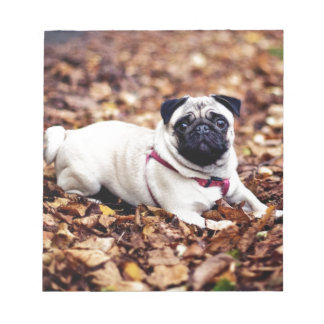 Adorable Pug Rests On The Autumn Foliage Notepads