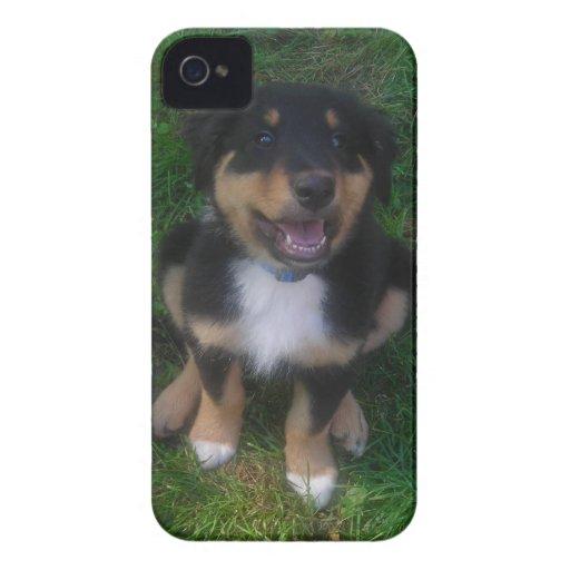 Adorable Puppy Blackberry Bold  Case Case-Mate Blackberry Case