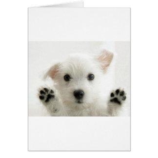 Adorable Puppy Card