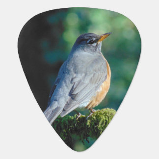 Adorable Robin Guitar Pick