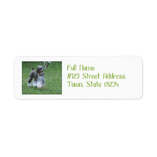 Adorable Schnauzer Return Address Label